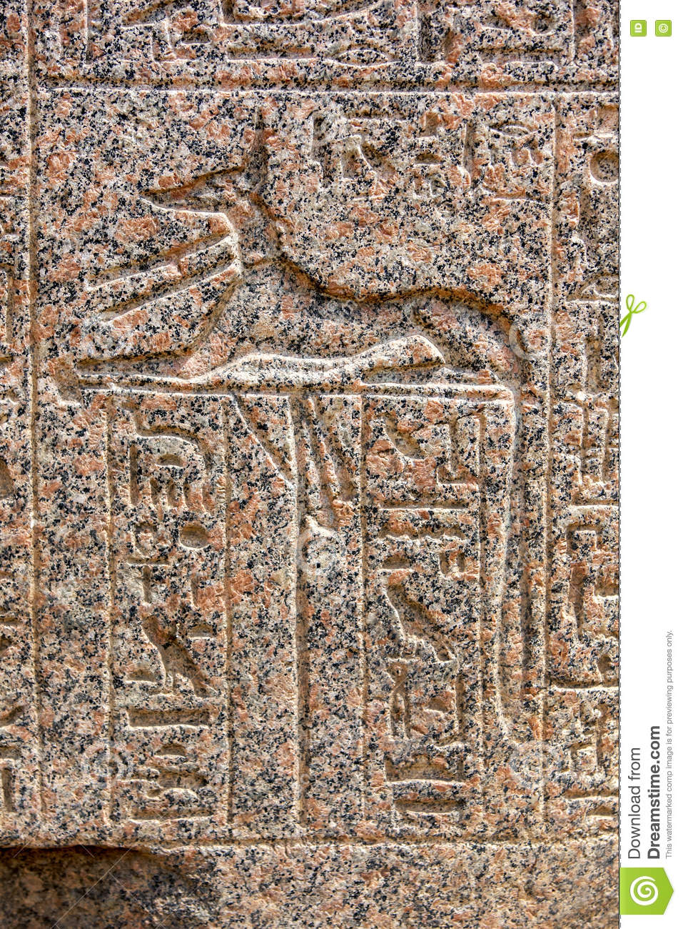 An Engraved Relief Of The Canine God Anubis In Memphis In