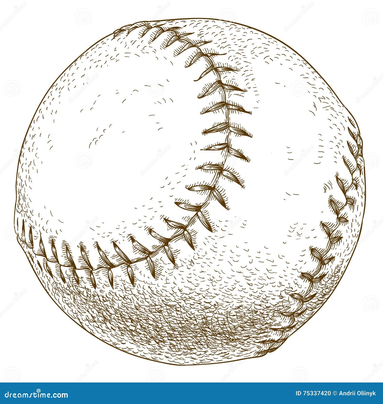 baseball illustration on a green checkered background vector illustration