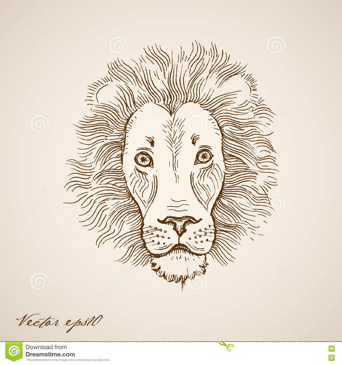 Engraving vintage hand drawn vector lion doodle collage pencil sketch wildlife zoo animal illustration