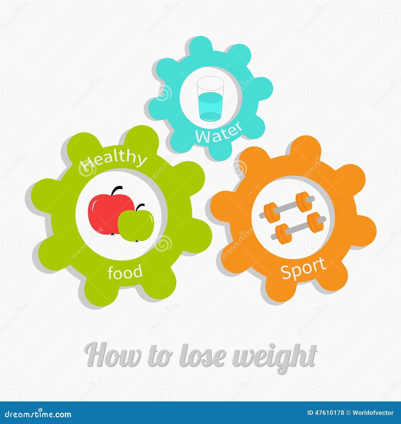 A engrenagem colorida da roda denteada ajustou-se com água, maçã, dumbell Conceito saudável do estilo de vida Como perder o proje