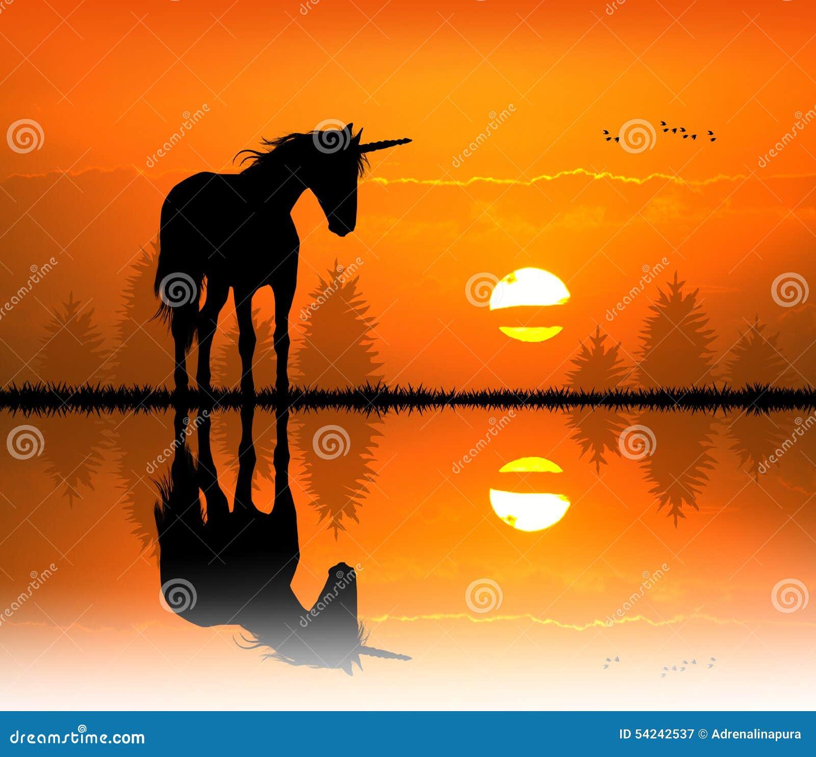 Enhörning på solnedgången