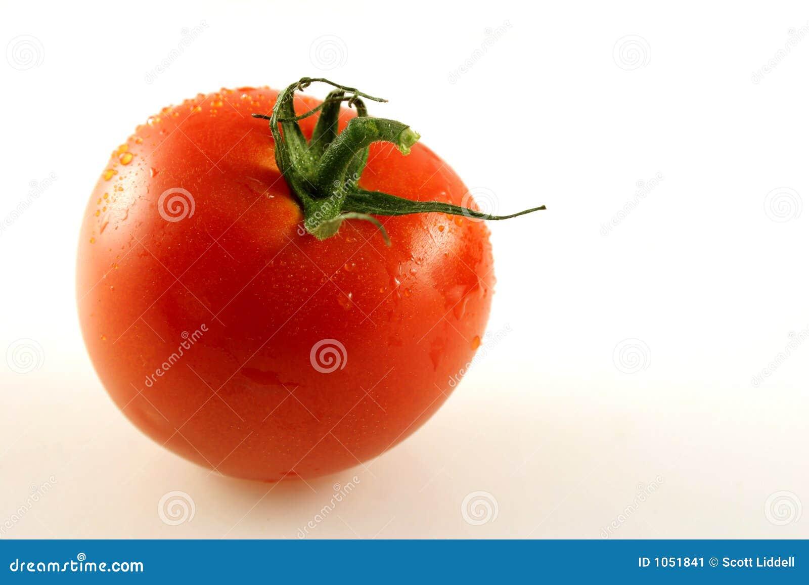 Enige Tomaat
