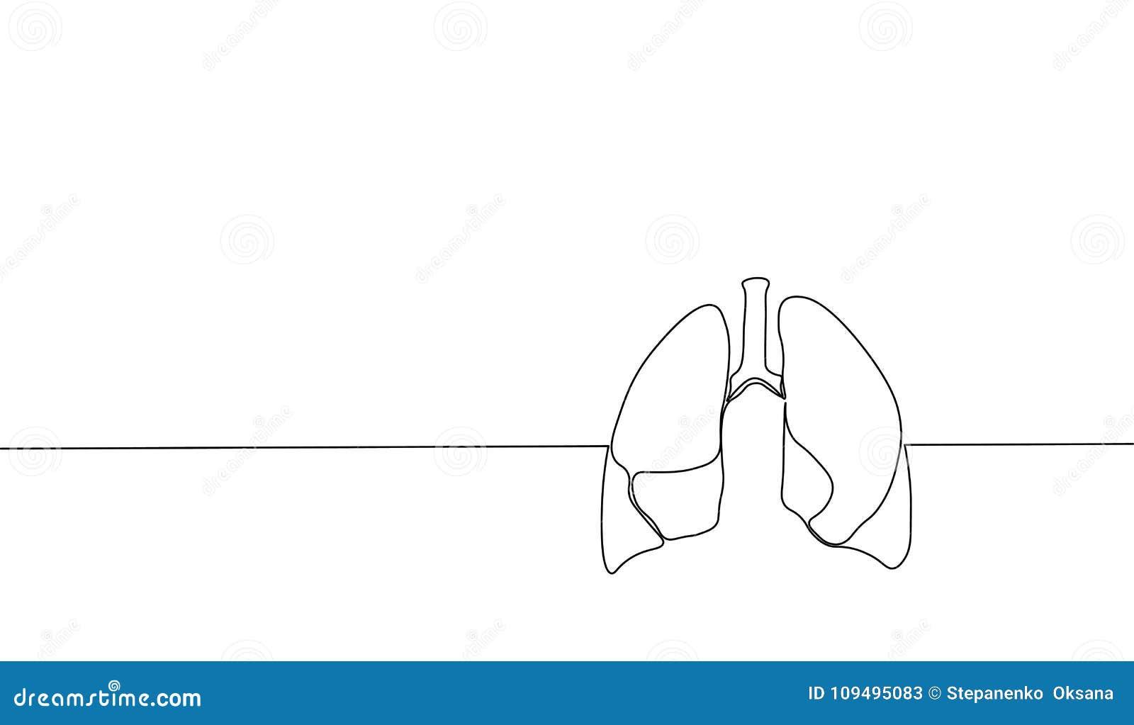 Enkel fortlöpande linje anatomisk mänsklig lungakontur för konst Sund medicin mot att röka den ingen världen för begreppsdesign