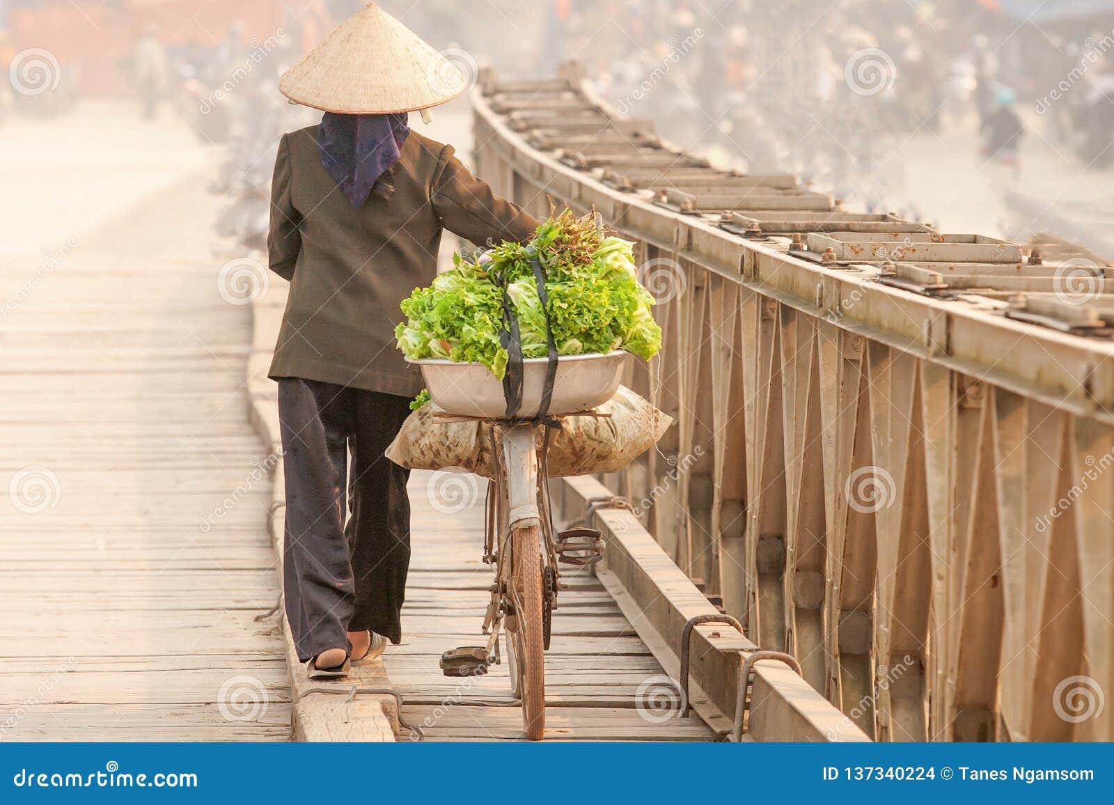 Enkel livstid Bakre sikt av vietnamesiska kvinnor med cykeln över träbron Vietnamesiska kvinnor med den Vietnam hatten, grönsak p