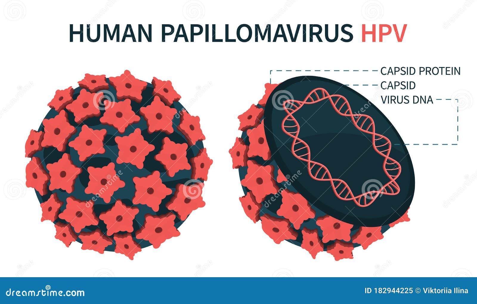 adn humán papilloma vírus mit adjon az embernek jódot