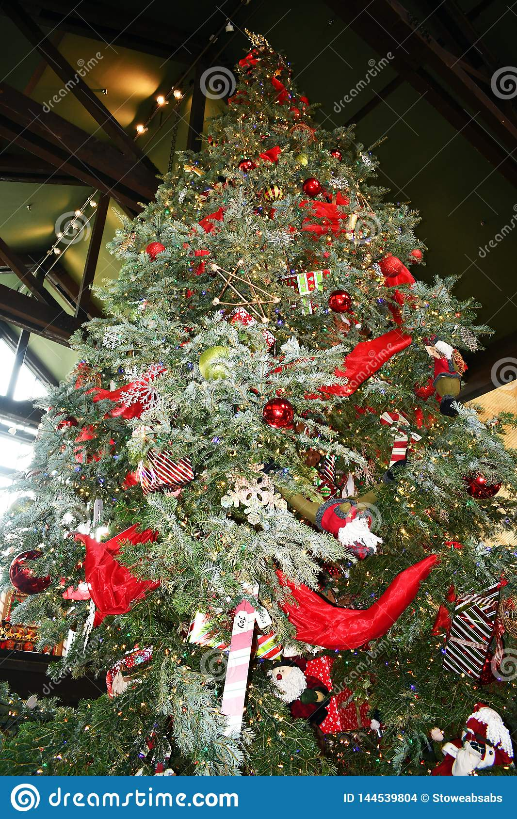 Enormer Weihnachtsbaum mit Lichtern