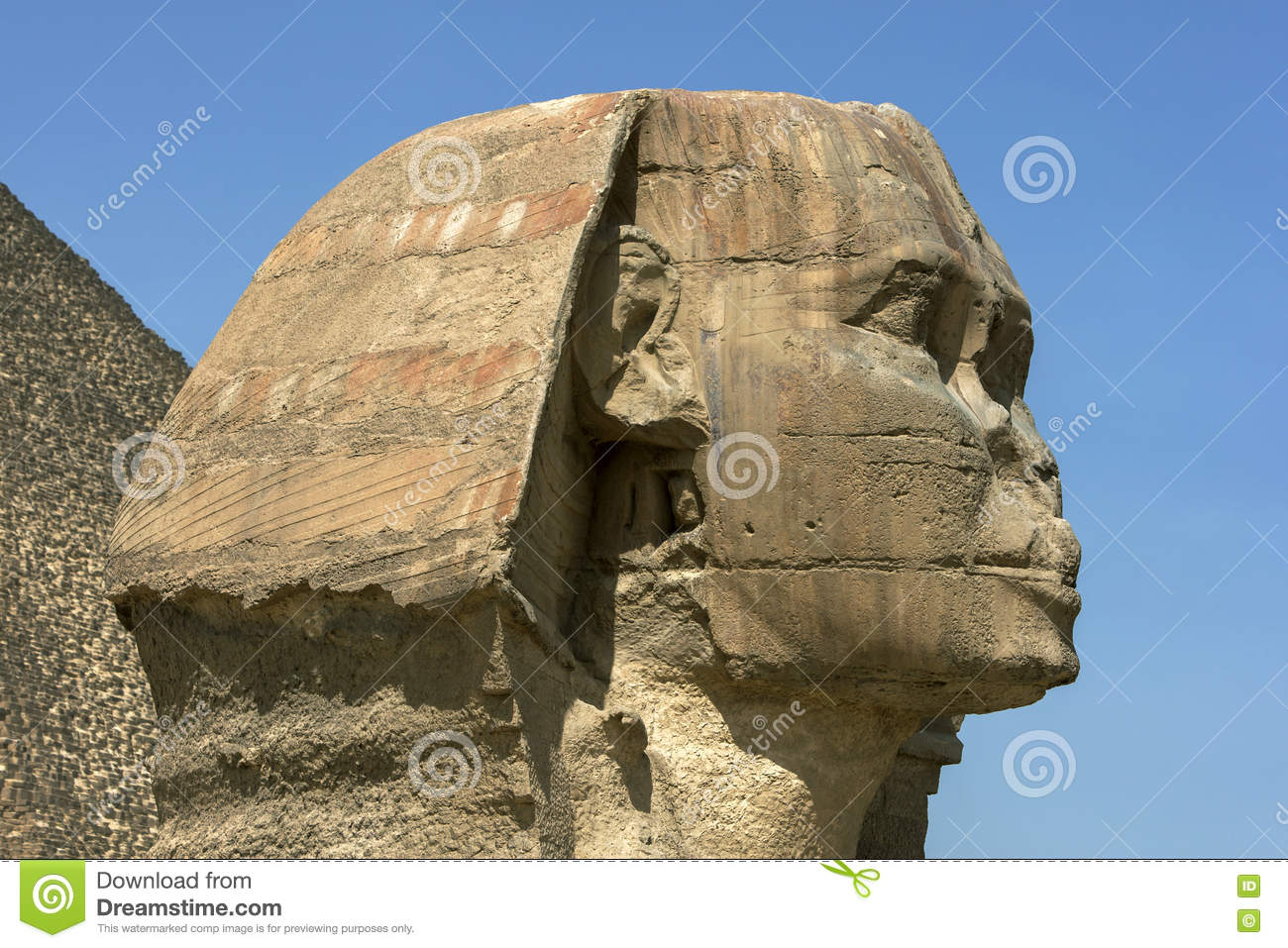 The enormous head of great sphinx giza at in