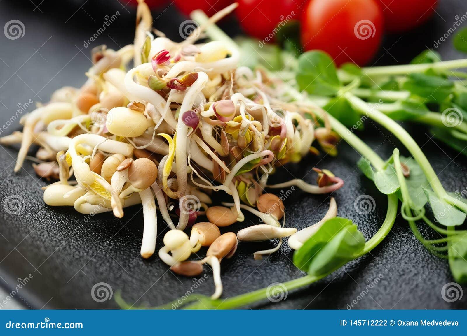 Ensalada de las semillas y del lino brotados de la haba con el aguacate El concepto de comida macrobiótica