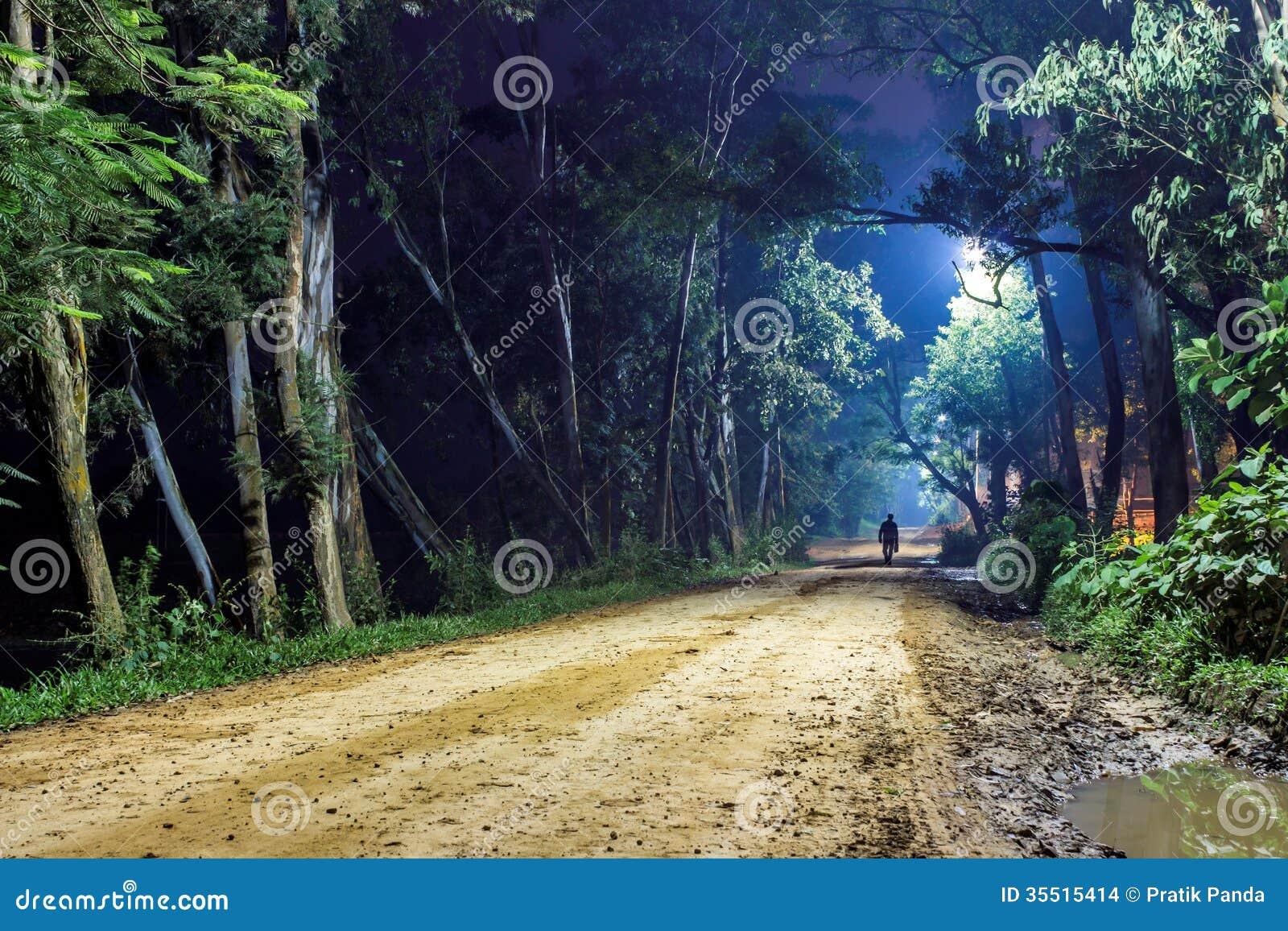 Ensam man på skogvägen, nattlandskap
