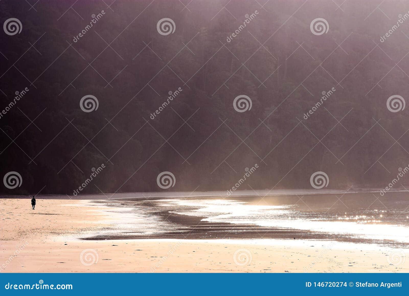 Ensam man som går på stranden