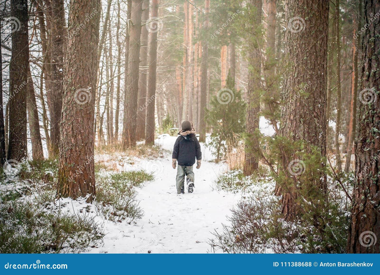Ensam pojke som går i skogen för sörjaträd