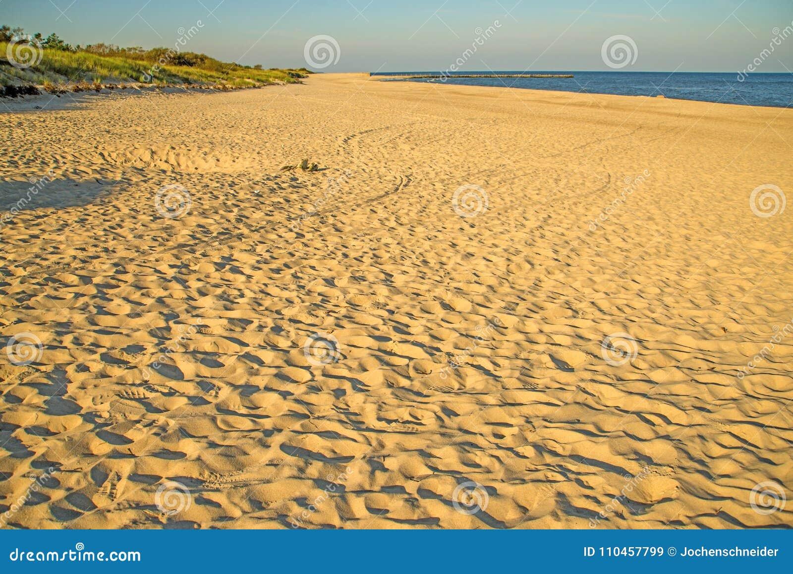 Ensam strand av Östersjön