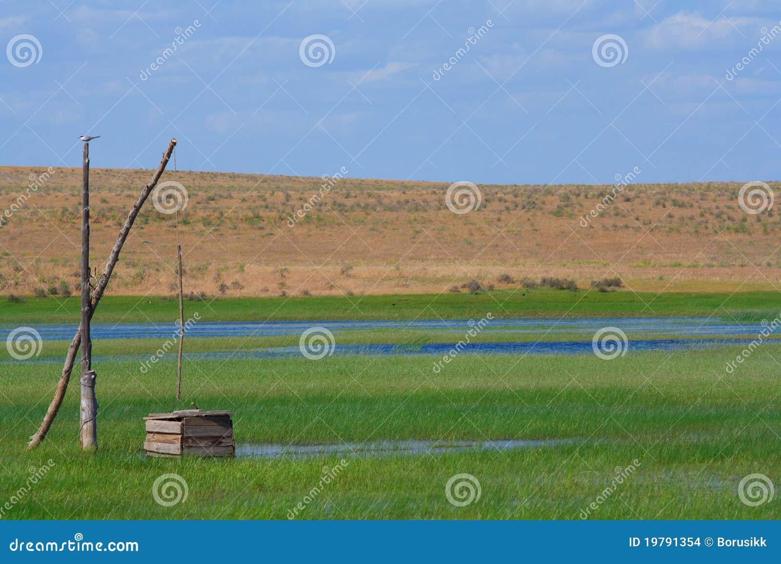 Ensam well för fågel