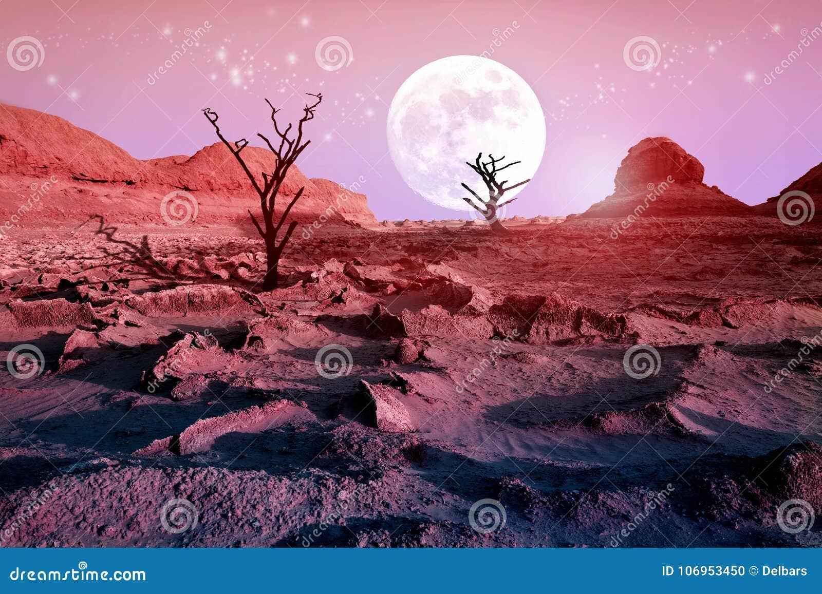 Ensamma torra träd i öknen mot en härlig rosa himmel och en fullmåne Månsken i öknen Konstnärlig naturlig bild