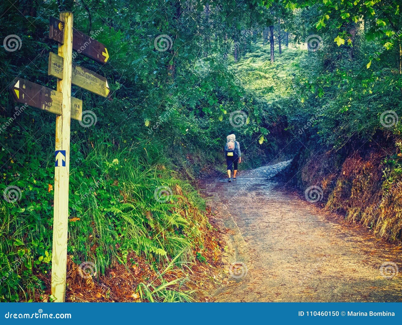 Ensamt vallfärda med ryggsäcken som går Caminoen de Santiago i S