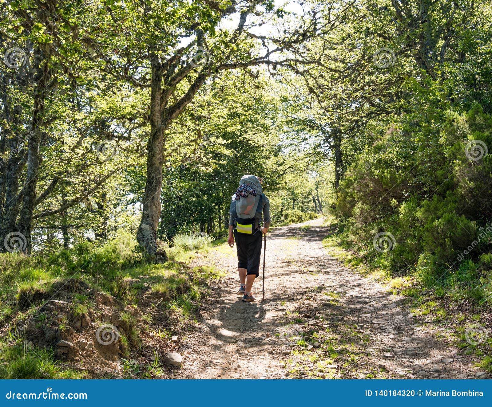 Ensamt vallfärda med ryggsäcken som går Caminoen de Santiago i Spanien, väg av St James