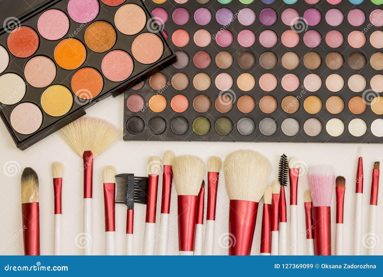 Ensemble coloré de maquillage de fards à paupières et de brosses