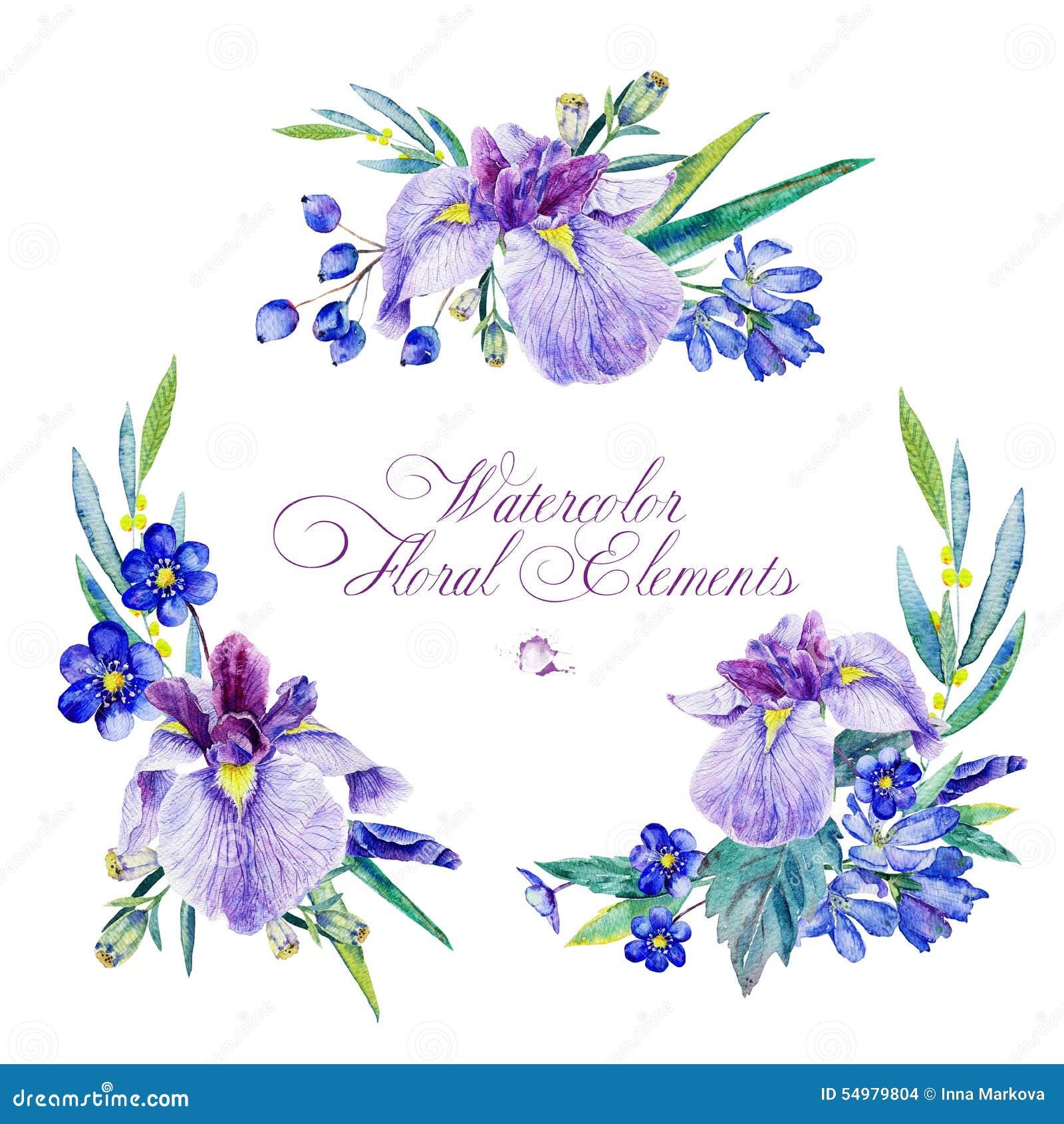 Ensemble d éléments floraux pour la conception