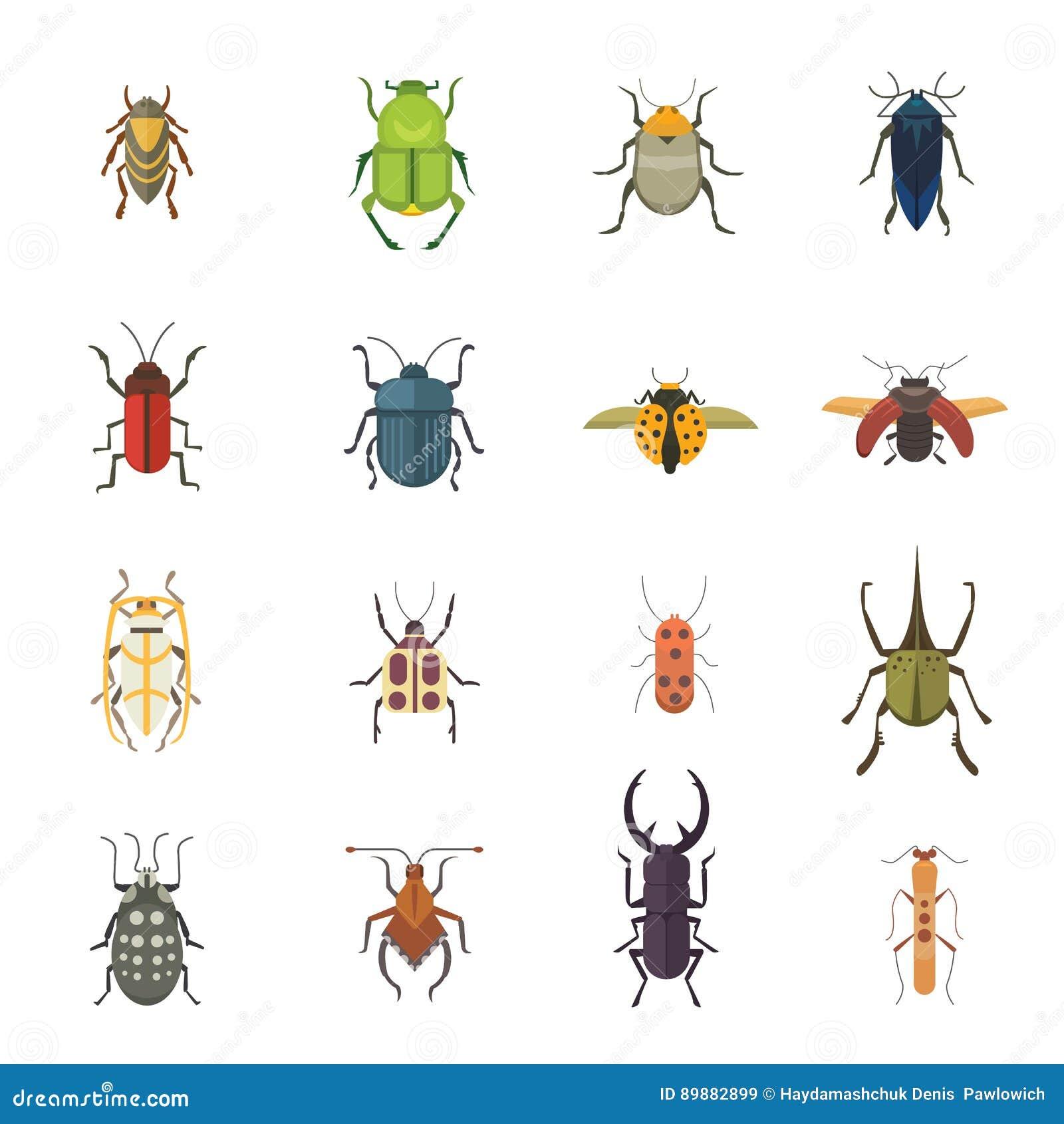 Ensemble d icônes plates de conception de vecteur de style d insectes Illustration de scarabée de nature de collection et de band