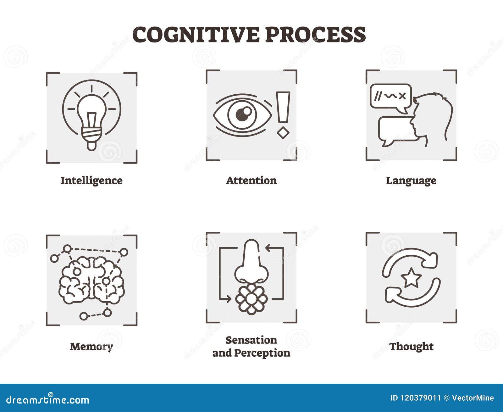 Ensemble d illustration de vecteur de processus cognitif Complotez avec, attention, et types de perception Collection d icône de