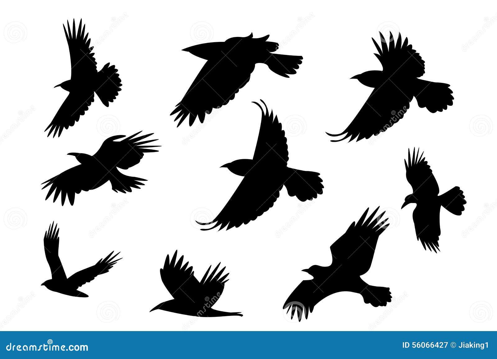 Ensemble d 39 oiseau de corbeau de vol de silhouette sans la - Dessin oiseau en vol ...