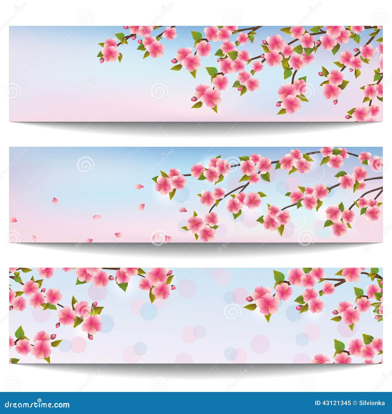 Ensemble De Belles Bannières Avec Le Cerisier Rose De ...