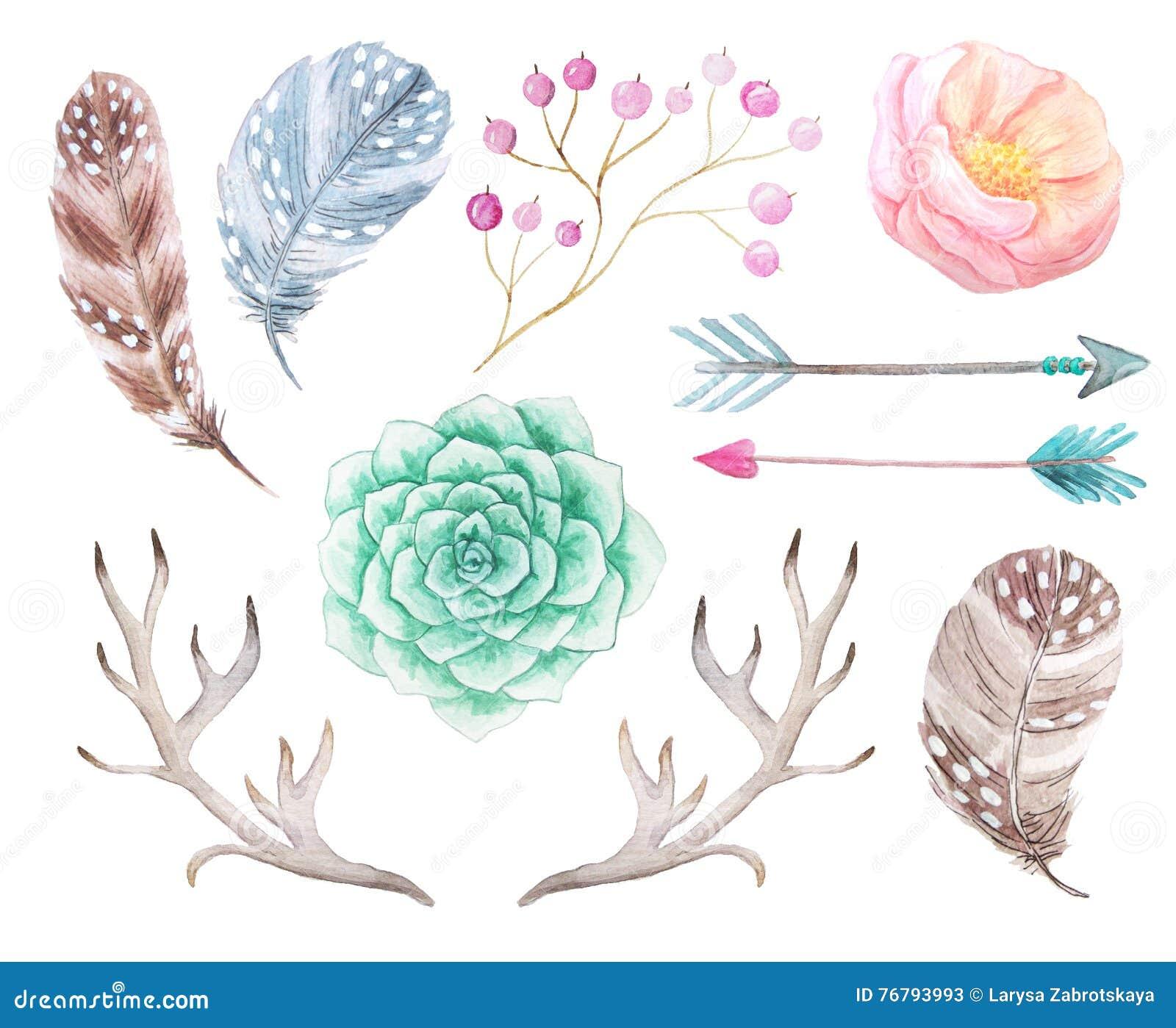 Ensemble de boho d aquarelle de fleurs et d andouillers