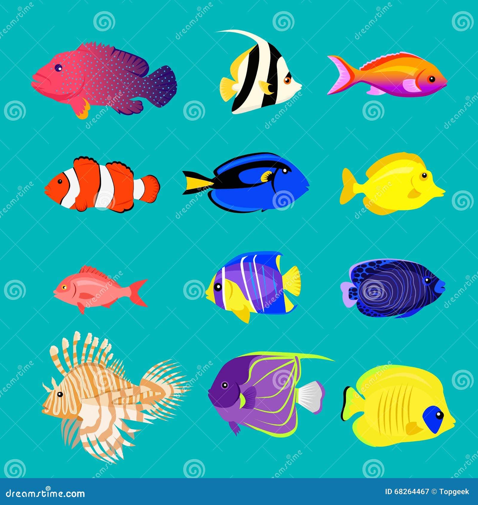 Ensemble de conception de couleur de poisson de mer plate illustration de vecteur illustration - Poisson dessin couleur ...