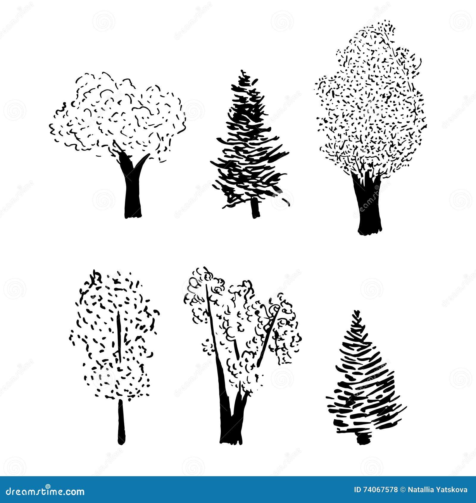 Ensemble de croquis d 39 arbre illustration de vecteur - Croquis arbre ...
