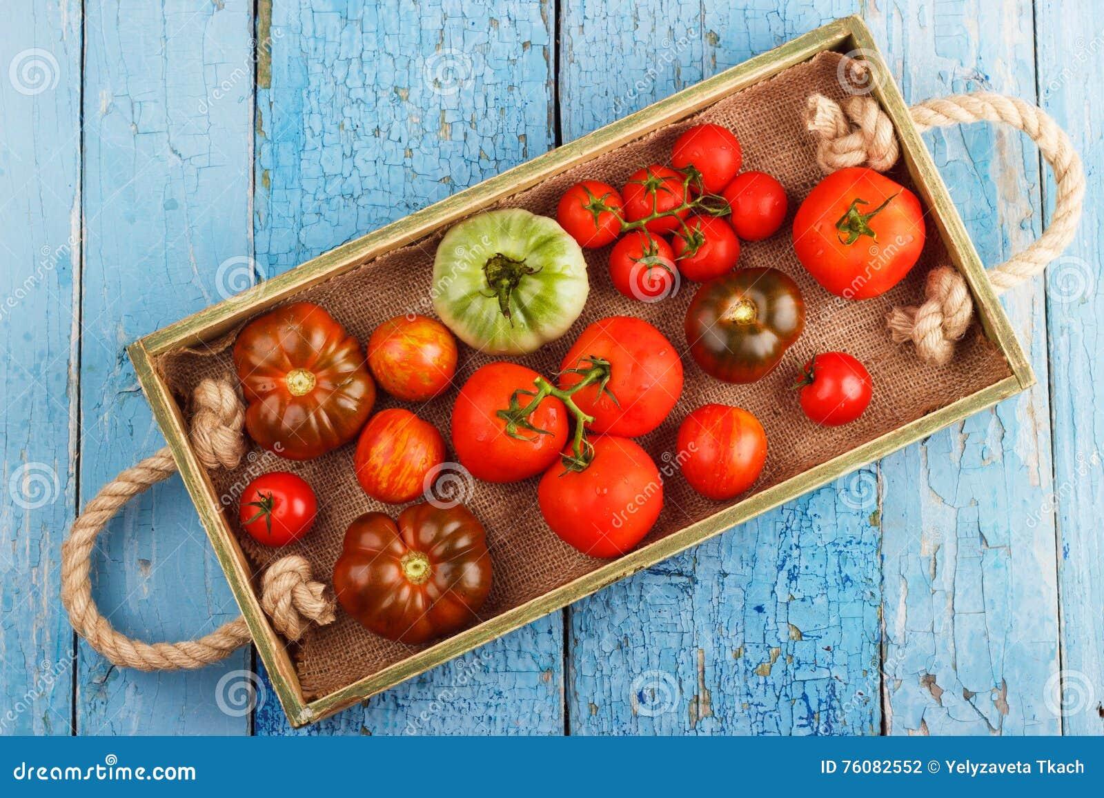 Ensemble de différentes sortes de tomates