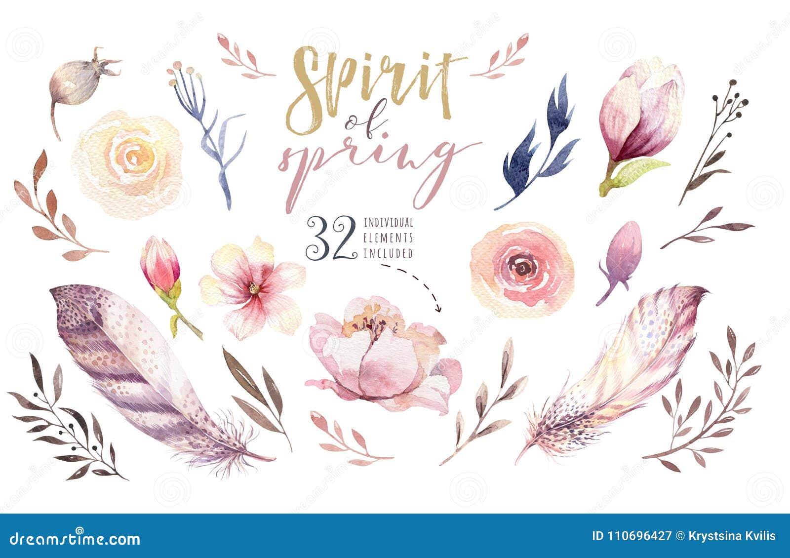 Ensemble De Fleur De Boho Collection Florale Coloree Avec Des