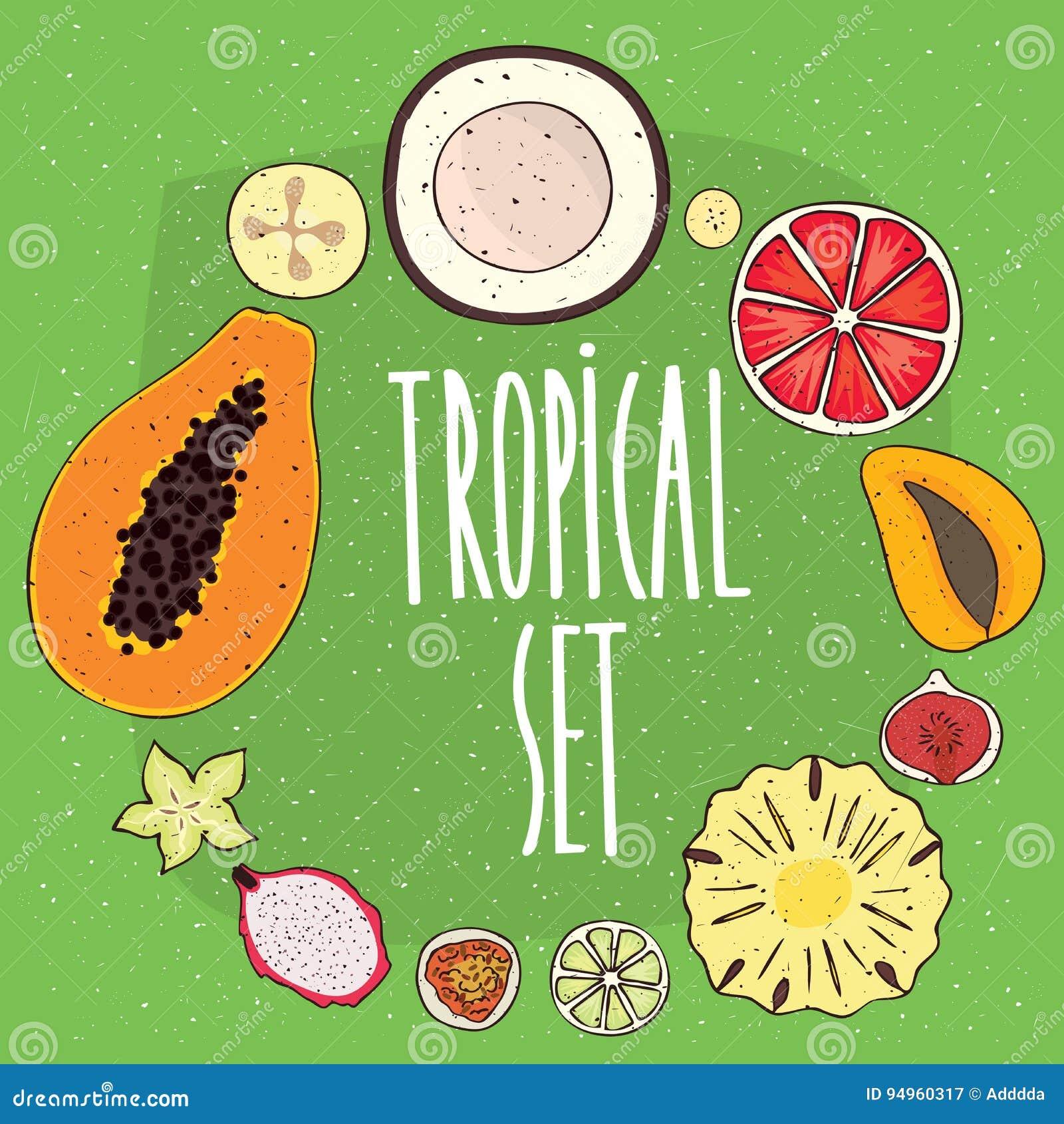 Ensemble de fruits tropicaux d isolement dans les sections transversales