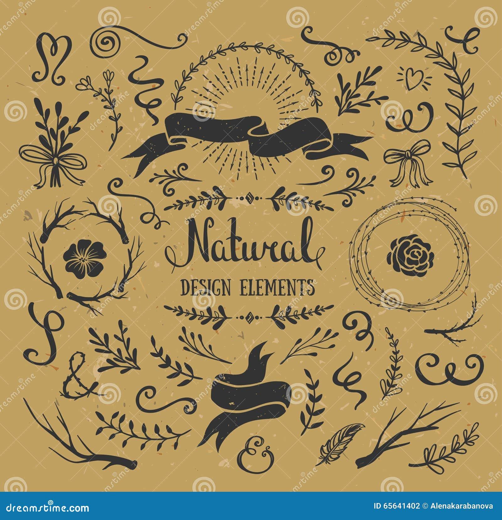 Ensemble de graphique de vintage de fleurs, de branches, de feuilles et d éléments rustiques de conception