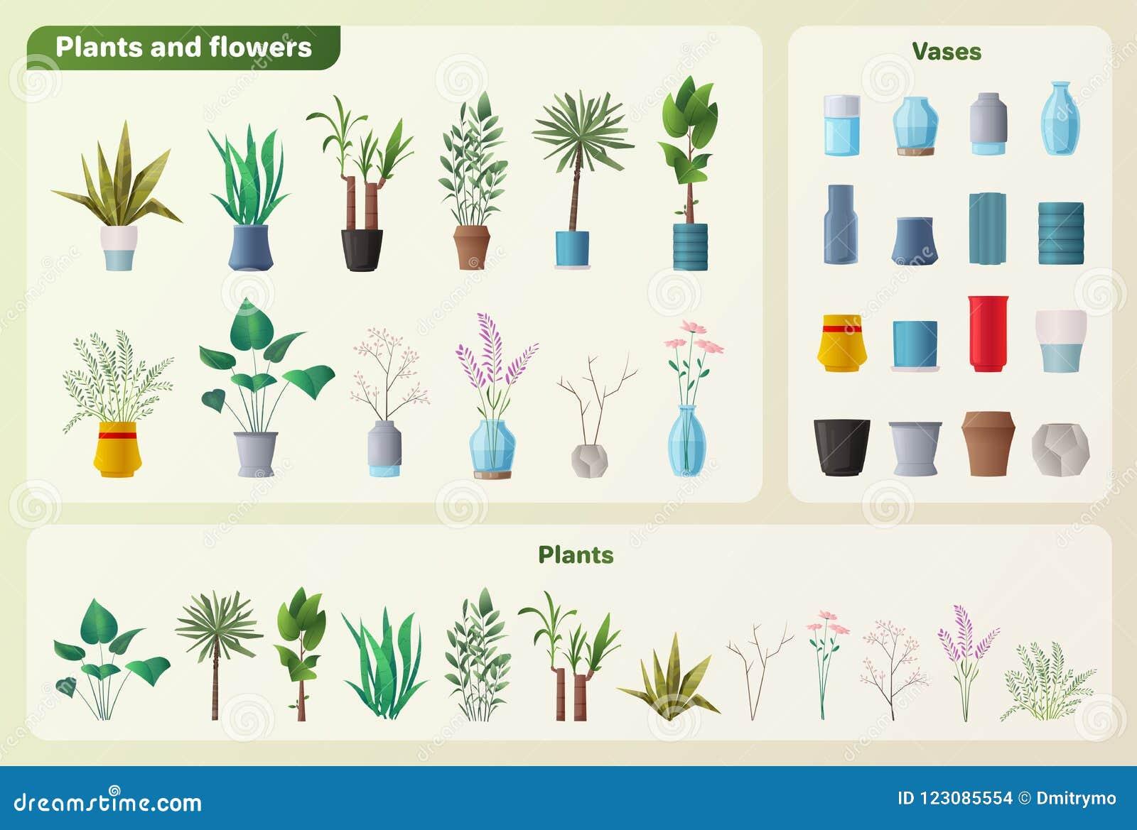 Ensemble De Plantes Et De Fleurs Illustration De Vecteur De