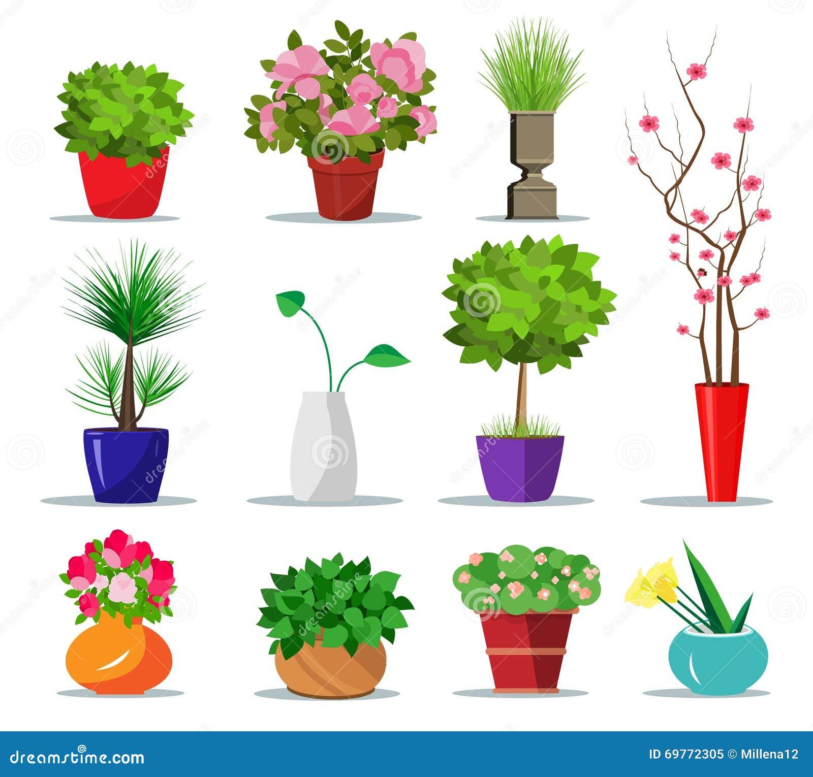 Ensemble de pots de fleurs et de vases colorés pour la maison pots d intérieur de style plat pour des plantes et des fleurs illus