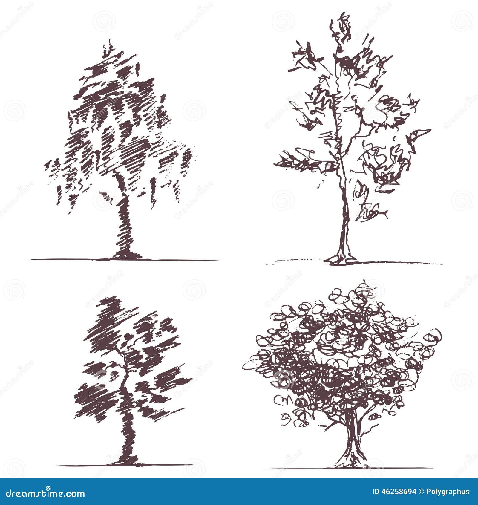 Ensemble de quatre arbres de croquis illustration de - Croquis arbre ...