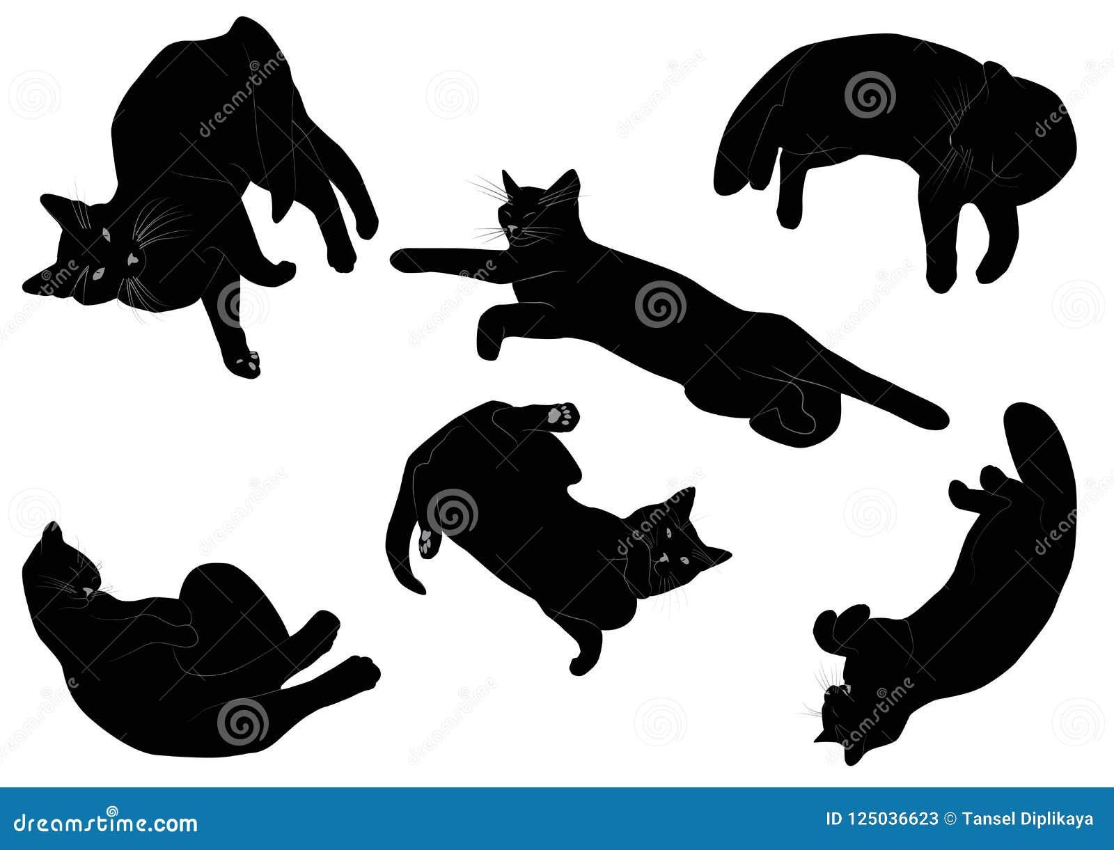 Ensemble De Silhouette Réaliste De Chat Noir Illustration De