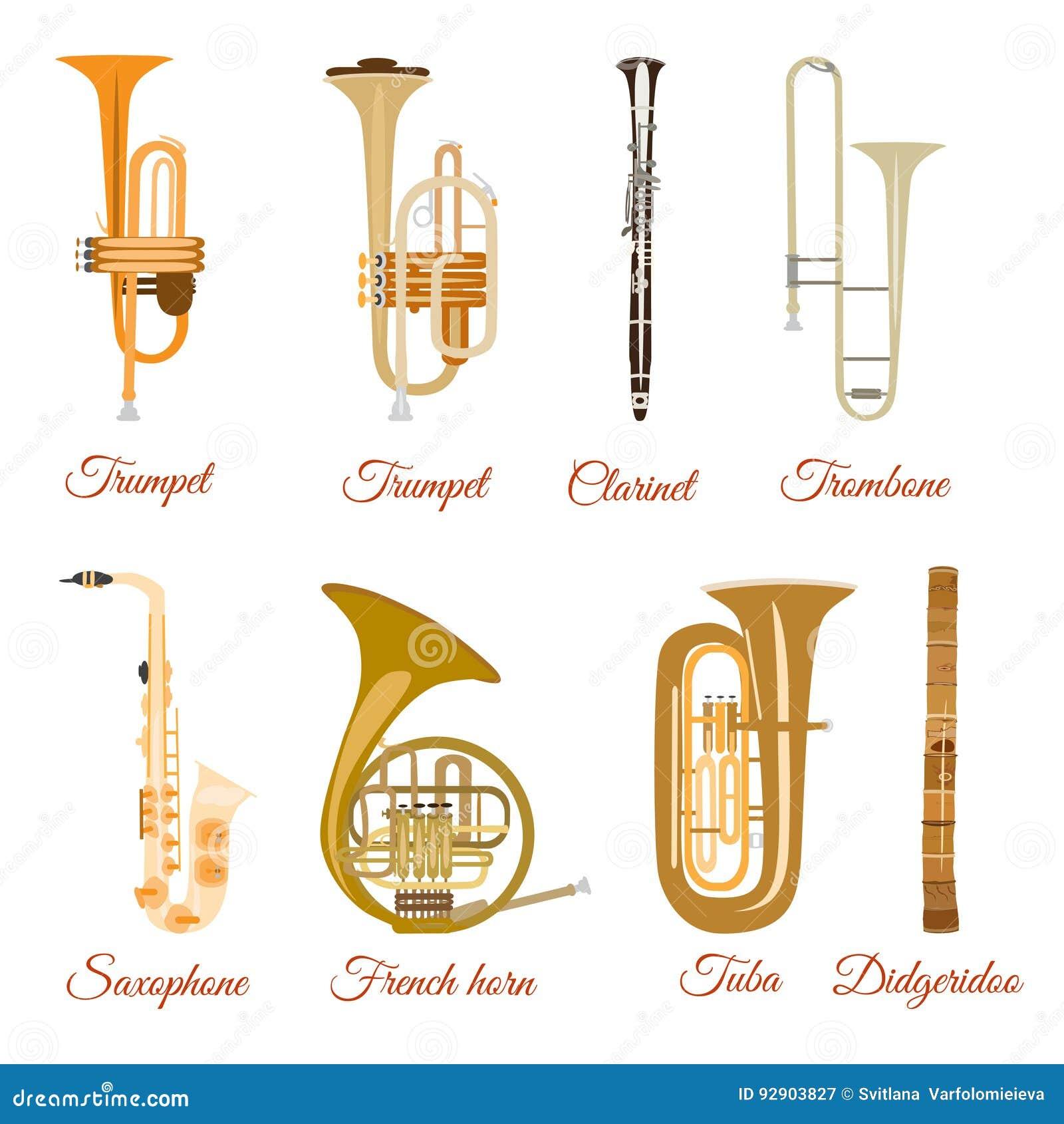 Ensemble De Vecteur Dinstruments De Musique De Vent D