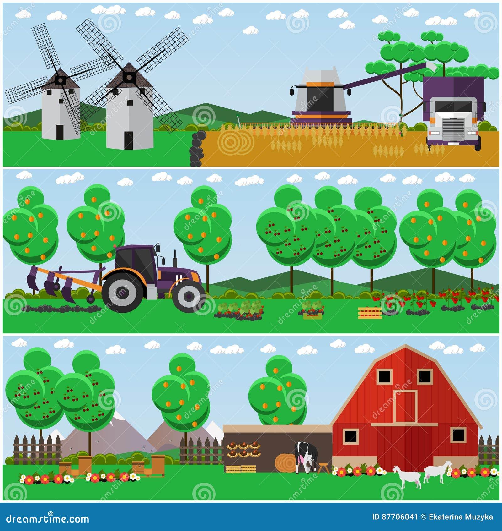 Ensemble de vecteur de ferme, champ de blé, affiches de paysage de campagne