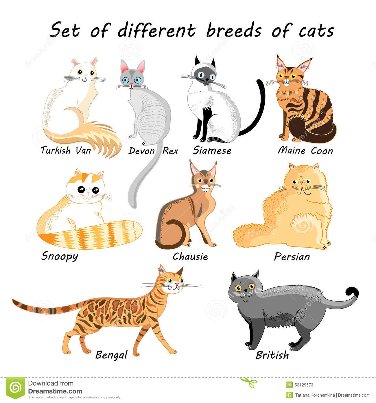 Cool Language Names For Cats