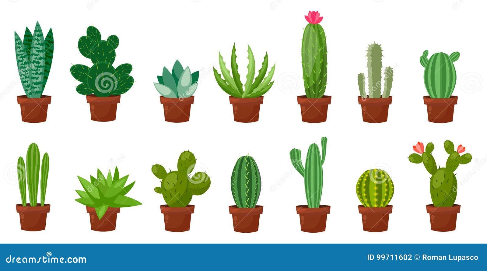 Ensemble horizontal de bannière de désert, cactus vert de pièce Plat, style de bande dessinée Fond de blanc d illustration de vec