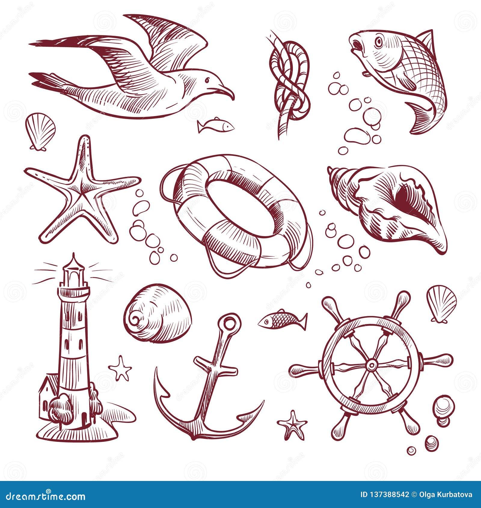 Ensemble marin de croquis Les étoiles de mer de mouette de phare de voyage d océan de mer ancrent des poissons de volant Tiré par