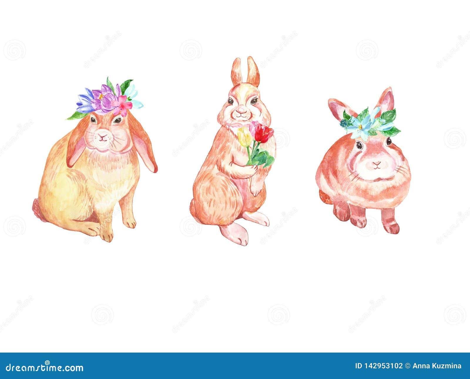Ensemble mignon de lapins de Pâques d aquarelle Lapins de bébé avec les fleurs colorées de ressort - crocus, tulipes et perce-nei