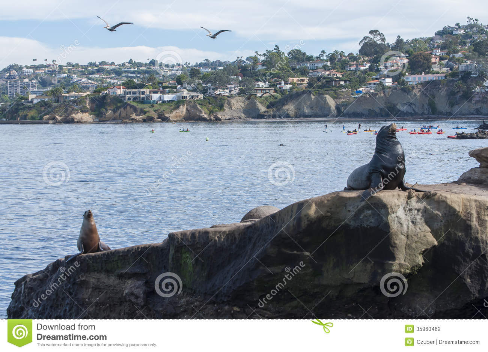 Ensenada de La Jolla en California