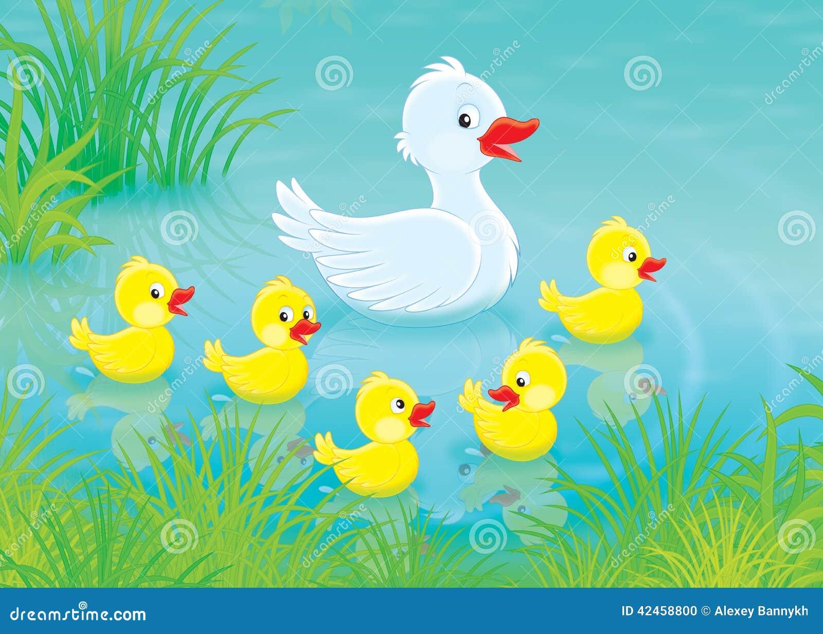 Ente und Entlein
