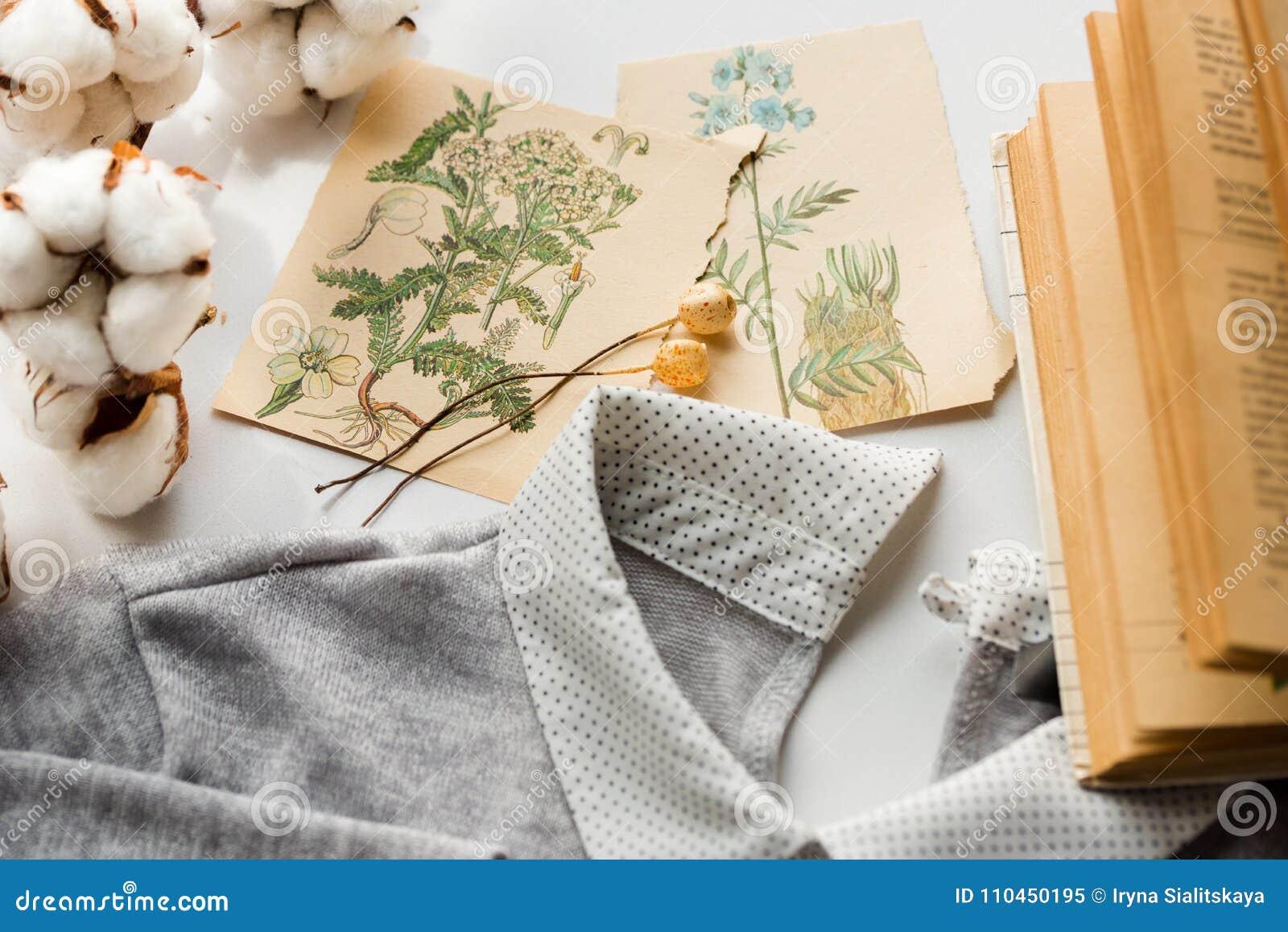 Enthält Transparente Nachrichten Baumwolle Blüht, Kartenzeichnungs ...