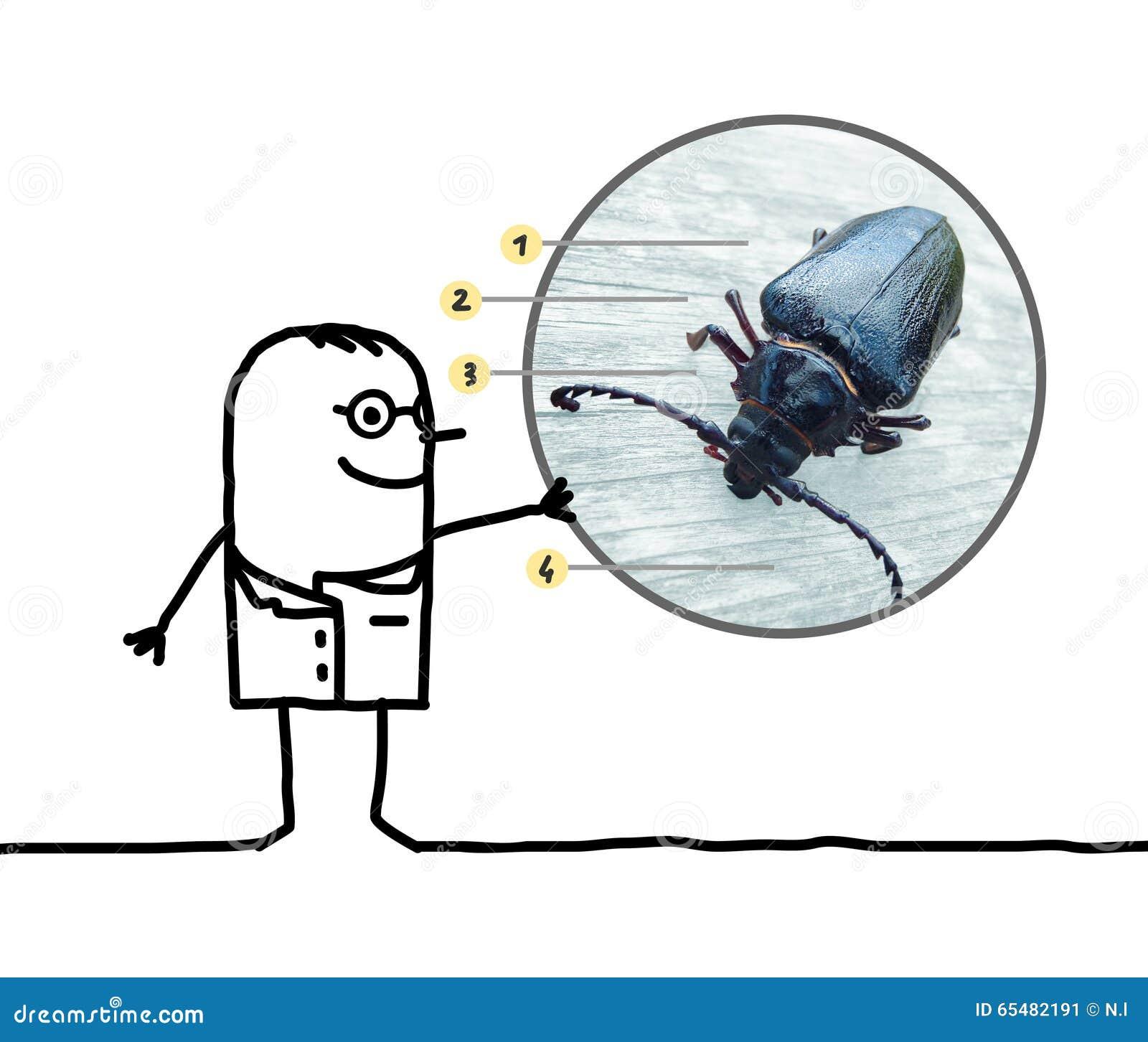 Entomólogo del hombre de la historieta que muestra un escarabajo