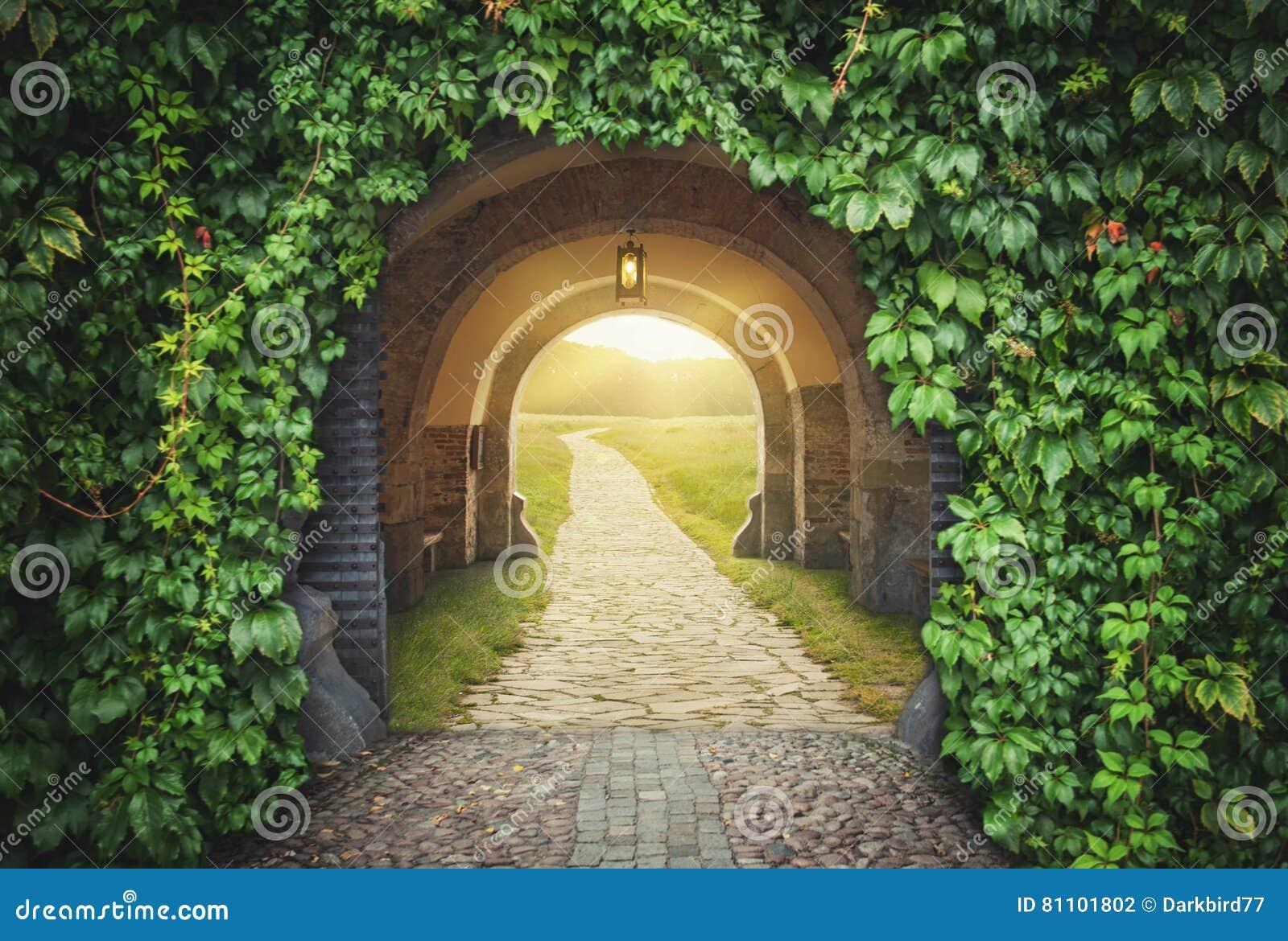 Entrada soleada de la puerta misteriosa Nuevo concepto de la vida