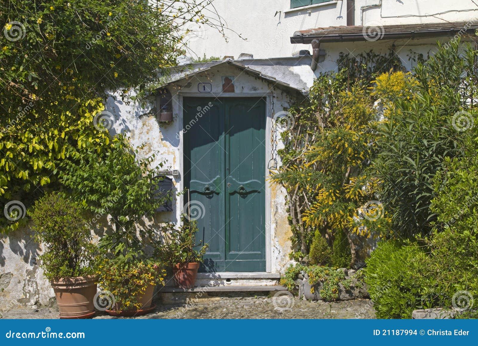 Entrance door in Levante