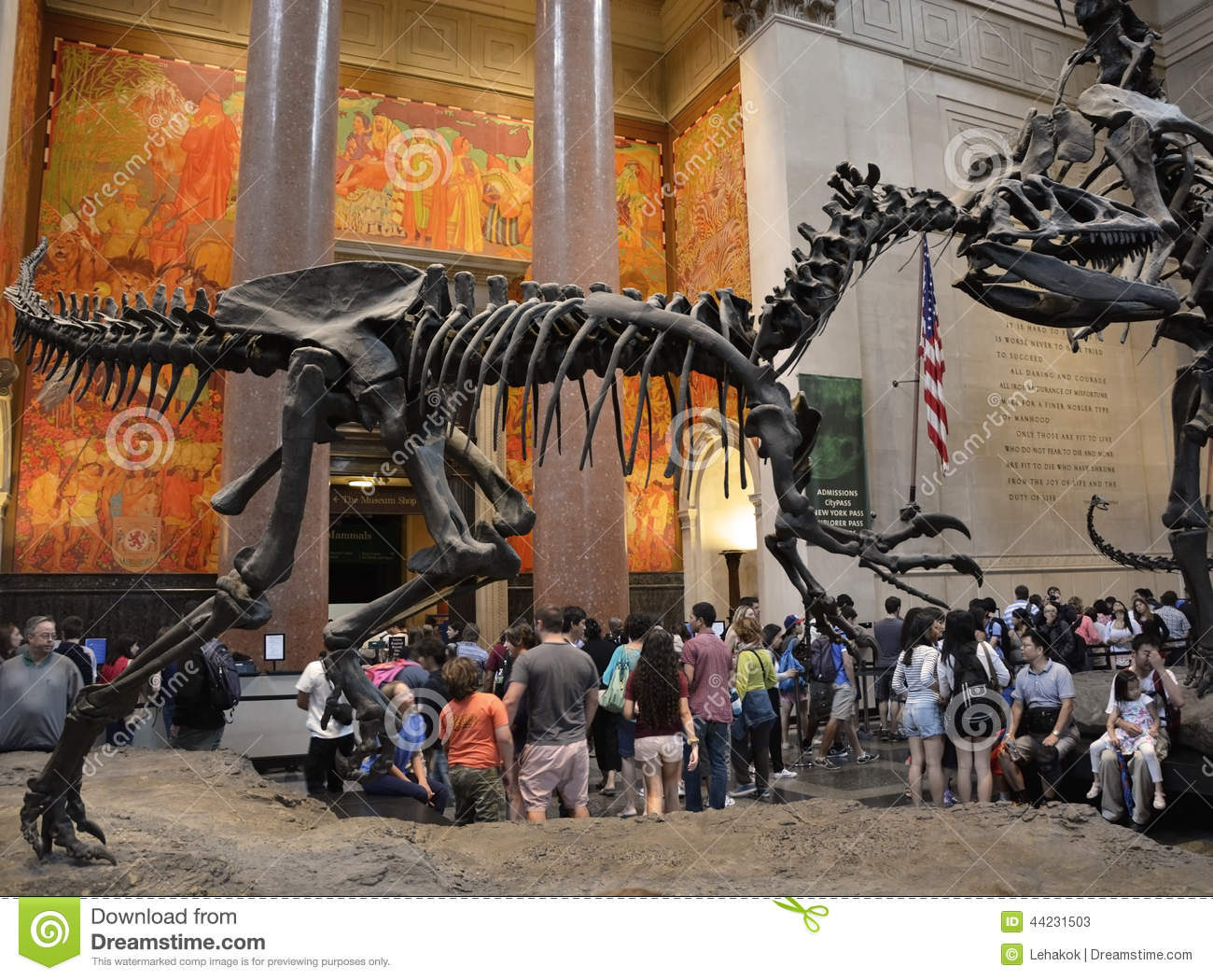 NEW YORK CITY - AUGUST 8  Entrance to the famous American Museum of natural  history on August 8 fa60813dc